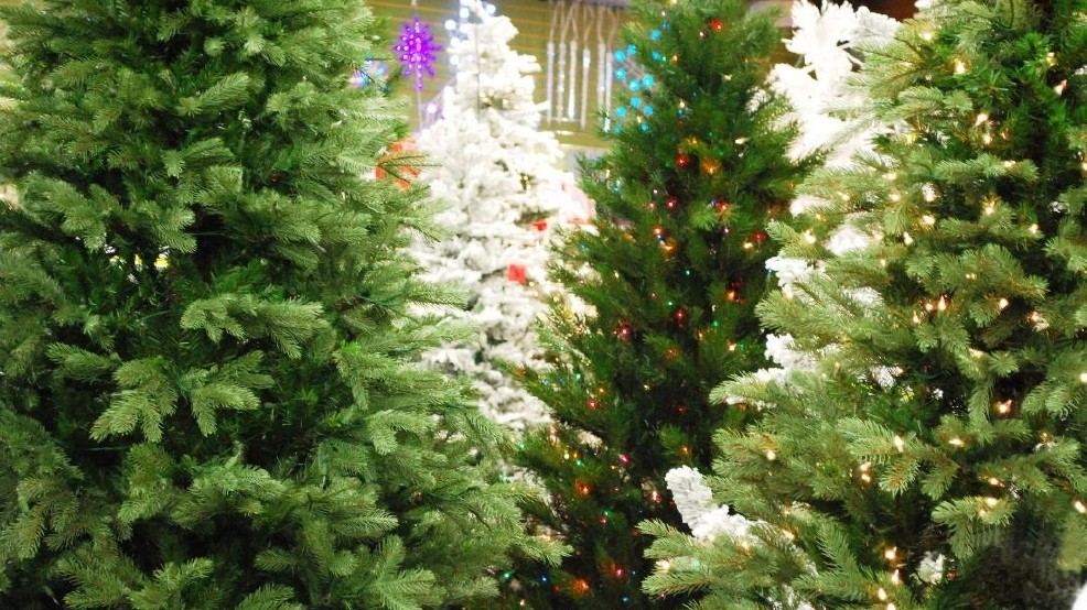 Christmas Tree Disposal.City Provides Christmas Tree Recycling Program Other